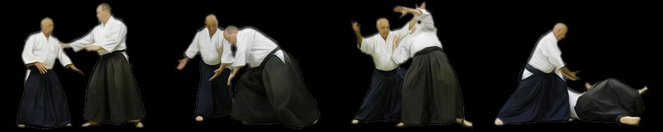 Aikido Online Academy